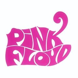 Nalepka za avto Pink Floyd