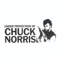 Nalepka za avto Chuck Norris