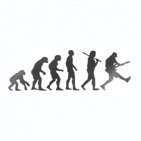 Nalepka za avto Evolucija kitarist