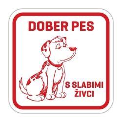 Pasja tablica dober pes s slabimi živci