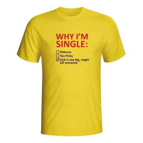 Moška majica Why I'm single